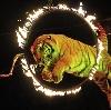 Цирки в Ставрополе